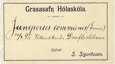 Flórumiði frá Sigurði Sigurðssyni, búnaðarmálastjóra.