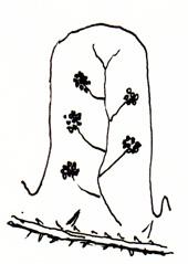 Myndin sýnir neðra borð á snubbóttum og heilrendum bleðli; gróblettir eru kringlóttir eða sporöskjulaga, engin gróhula. Teikn. ÁHB.