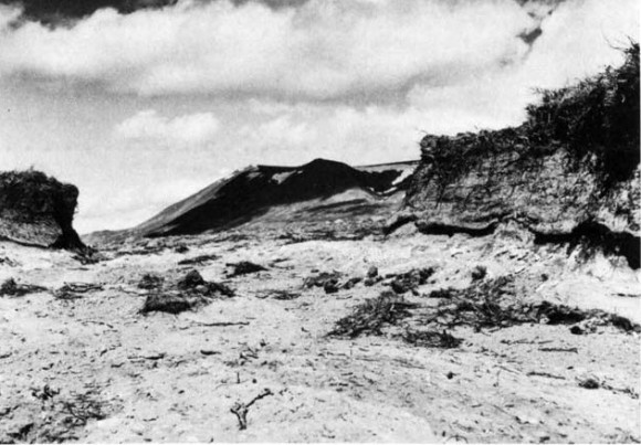 "Fig. 1. A typical gully caused by wind erosion in Fnjóskadalur. The white stripe is one of the layers of volcanic ash found in usual ''loess-soil"" profiles. The layer is a prehistoric one originating from the mountain Hekla or its vicinity. - 1974. Photo P. Jonsson."
