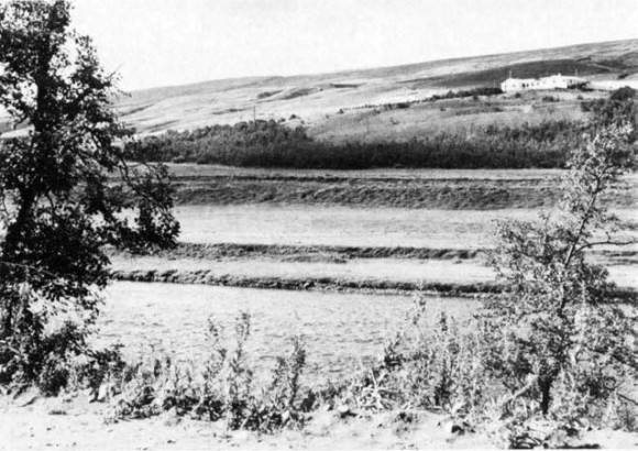 Fig. 4. The farm Hróastaðir on the west bank of river Fnjóská. The slopes above and south of the farm were covered with birchwood late in the 18t h century. The small patch of young birc hes below the hayfield has grown from self-sown seed ling within a protected area, 1974. Photo P. Jonsson.