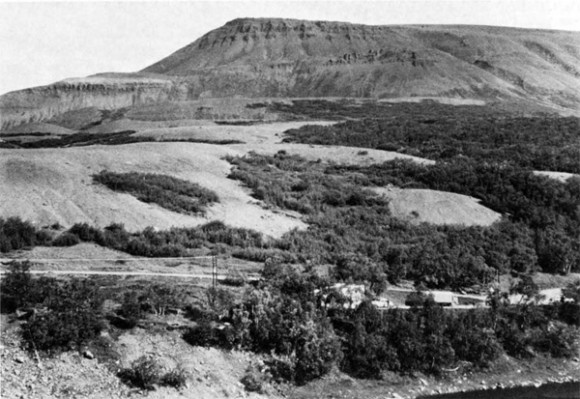 Fig. 6. The terrace SW of H als 22 years after it was protected from grazing. On the few patches left of origi nal soil, birches have sprouted vigorously from old roots. The eroded terrace is almost as barren as it was previous to enclosure, 1968 . Photo H. Bjarnason.